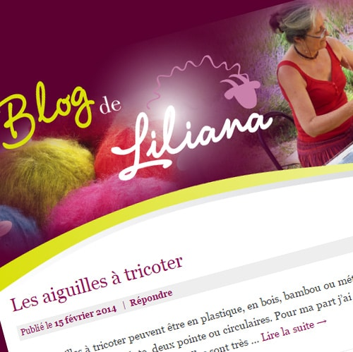 Liliana Mohair – Conception d'un blog WordPress